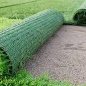 grass sand